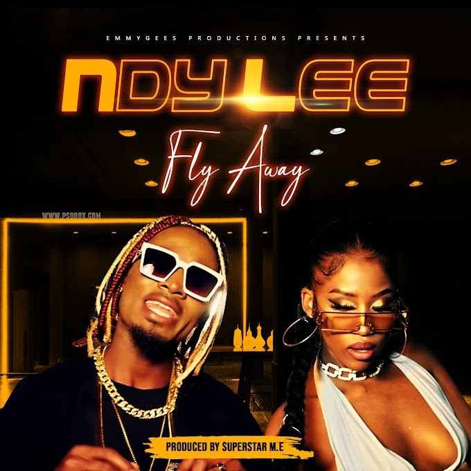 Ndy Lee - Fly Away (2021) [Download]