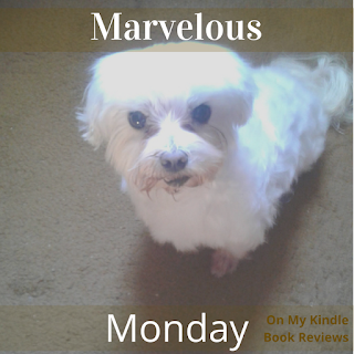 Lexi and On My Kindle Book Reviews on Facebook or Instagram