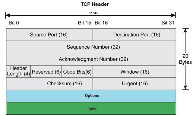 TCP Header Details, TCP Header