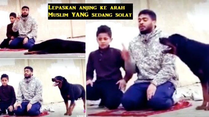 Anjing garang tak berani gigit lelaki yang sedang s0lat ini, tunduk lepas kalimah Syahadah dibaca