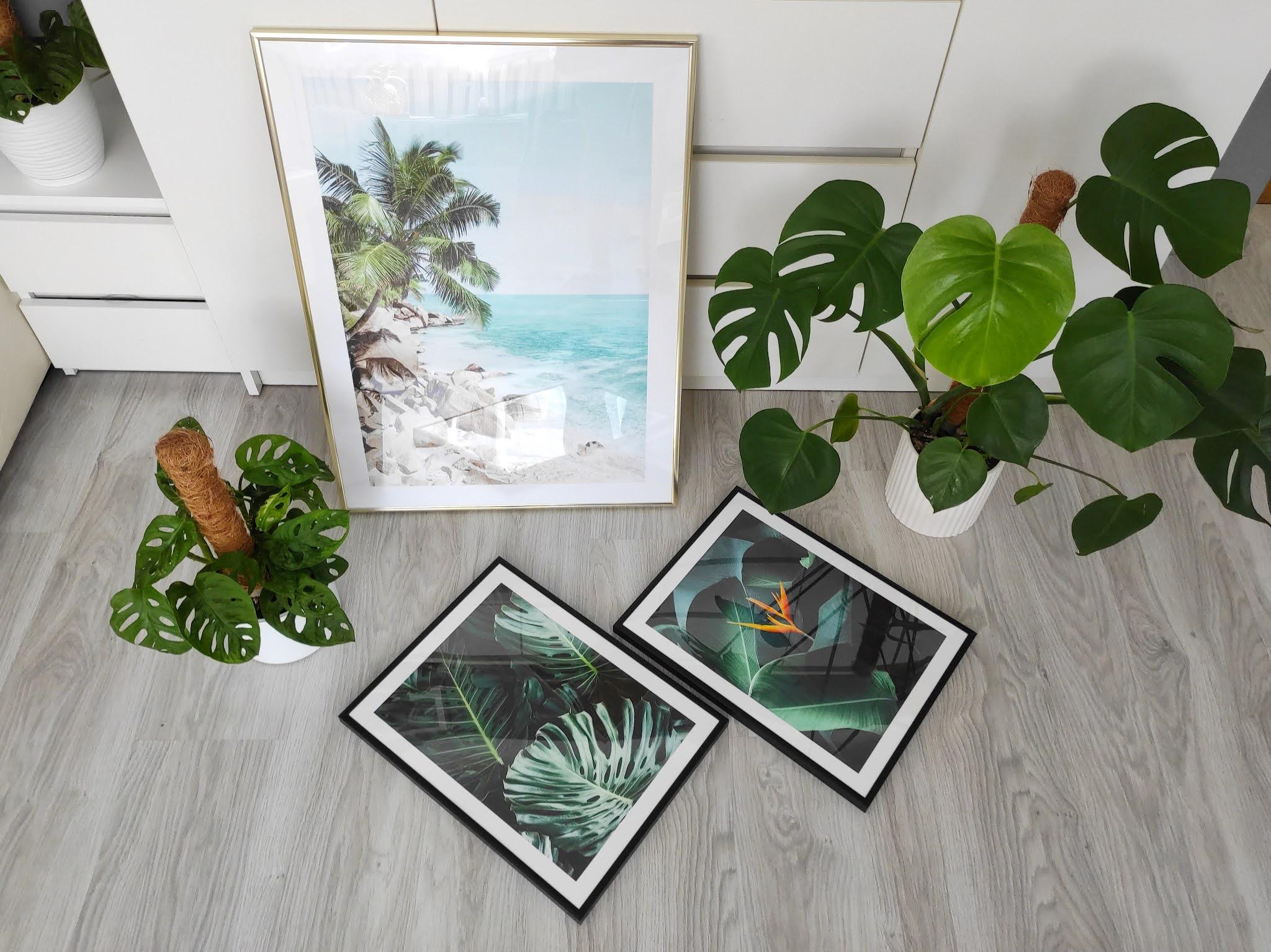 Plakaty botanika