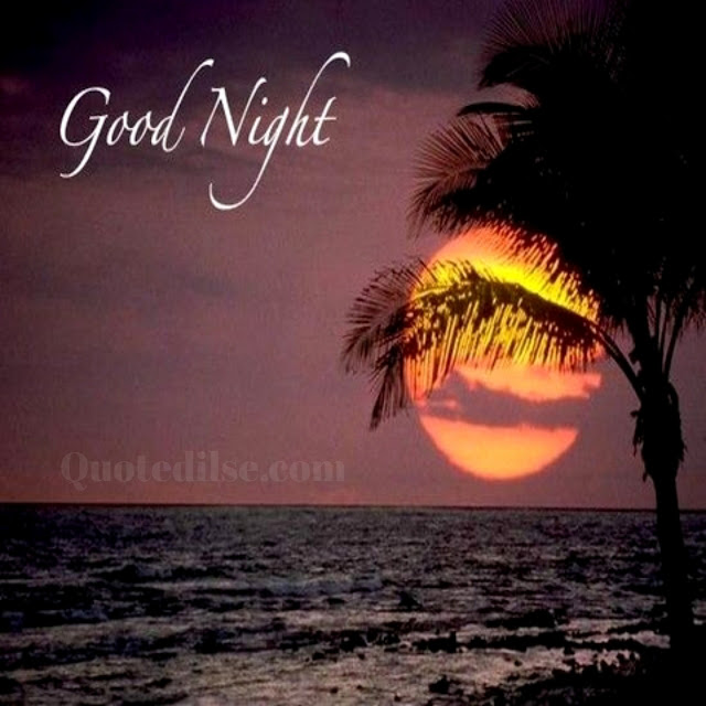 sad good night status in hindi