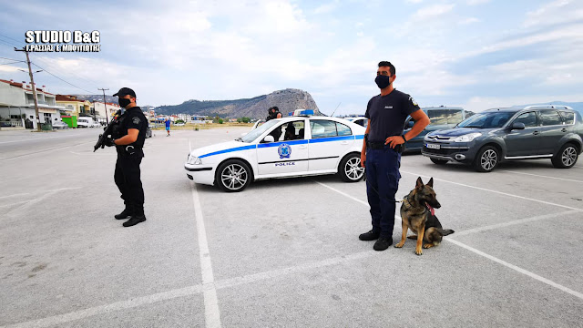 Αργολίδα: Έλεγχοι της αστυνομίας στο Ναύπλιο με εκπαιδευμένο σκύλο
