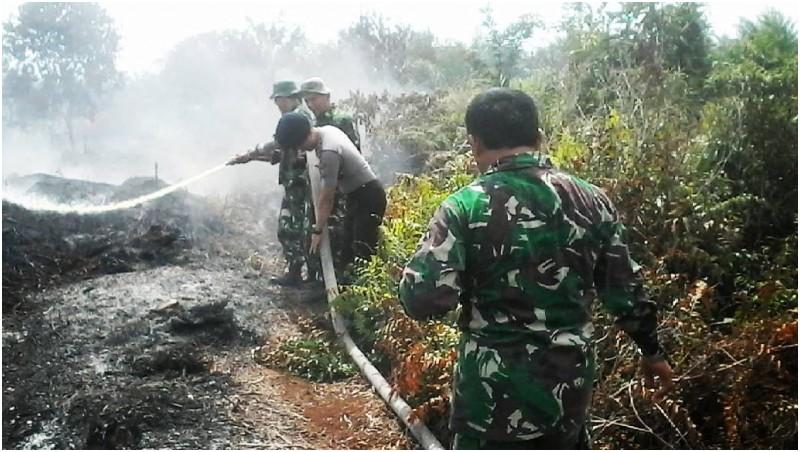 Anggota TNI berjuang memadamkan kebakaran hutan di Riau