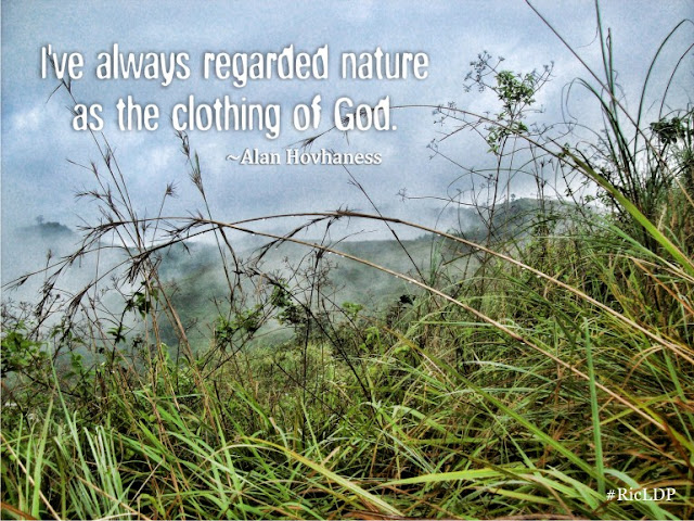 I've always regarded nature as the clothing of God