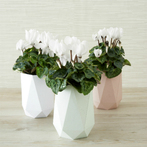 Folded Paper Vases with Flowers