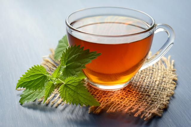 ماهي فائدة الشاي الاخضر للجسم - للتنحيف - للشعر - للقلب