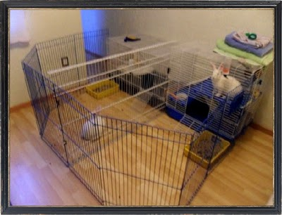 Casas de madera prefabricadas casas para conejos baratas for Casas de juguete para jardin baratas