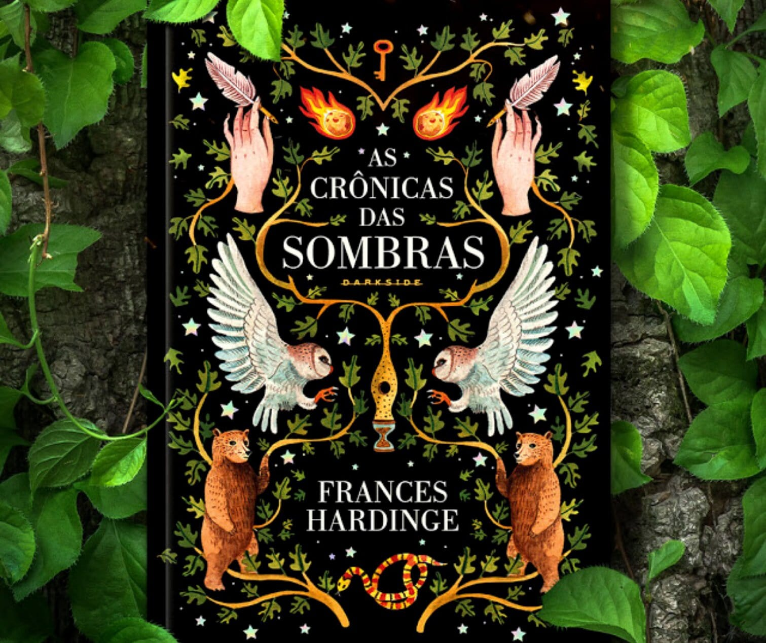 Resenha: As Crônicas das Sombras, de Frances Hardinge
