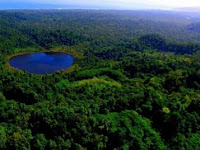 Koya Tengah, Kota Jayapura, Papua, Terdapat Danau Di Atas Bukit, Ini Dia Ulasan kampung koya tengah