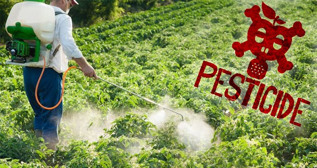 Νέα μέθοδος ψεκασμού φυτοφαρμάκων! Η σωτηρία για τους μελισσοκόμους;