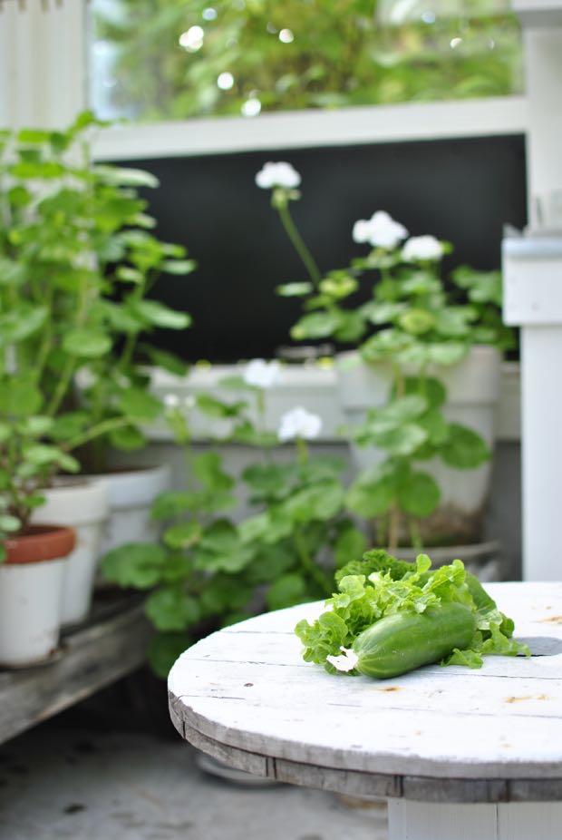 växthus kabeltrumma hannashantverk.blogspot.se