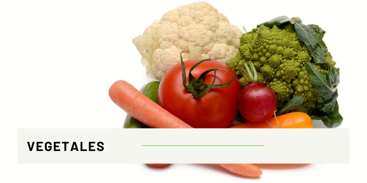 ANTIOXIDANTES- verduras