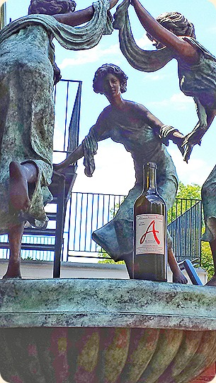 Wine muses dance around ANC Petit Verdot