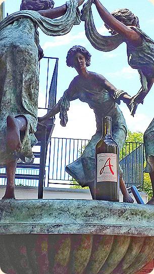 Wine muses dance around ANC Petit Verdot