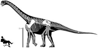 New species of carnivorous dinosaur discovered in Utah