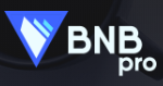 bnbpro обзор