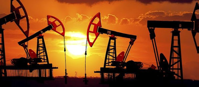 India buys 1 raw material from the world's newest oil producer Guyana