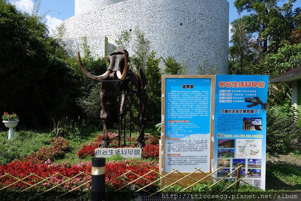 台北動物園(37).jpg