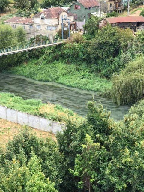 rio Damas - Osorno