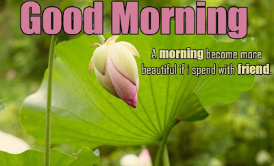 Good morning messages for friends with pictures