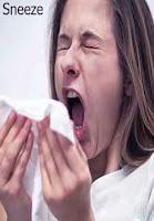 Sneeze,হাঁচি দেওয়া