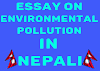 Nepali essay on Environment Pollution | Nibandh on environment pollution in Nepali