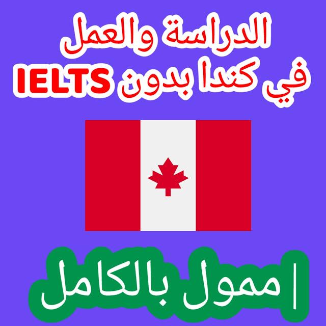 الدراسة والعمل في كندا بدون IELTS | ممول بالكامل