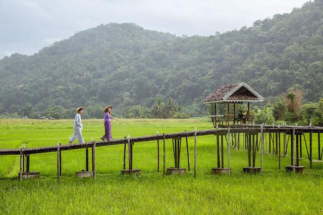 """""""Phượng Hoàng Cổ Trấn"""" version Thái thực ra chính là ngôi làng có tên Ban Rak Thai - một ngôi làng nhỏ nằm nép mình trên khu vực cao nhất của tỉnh Mae Hong Son, chỉ cách biên giới Thái Lan – Myanmar chừng 1km. Vì nằm cách khá xa trung tâm nên ngôi làng này không nổi tiếng đối với du khách quốc tế cho lắm, nhưng với người Thái thì đây lại là một trong những địa điểm nghỉ dưỡng siêu lý tưởng."""