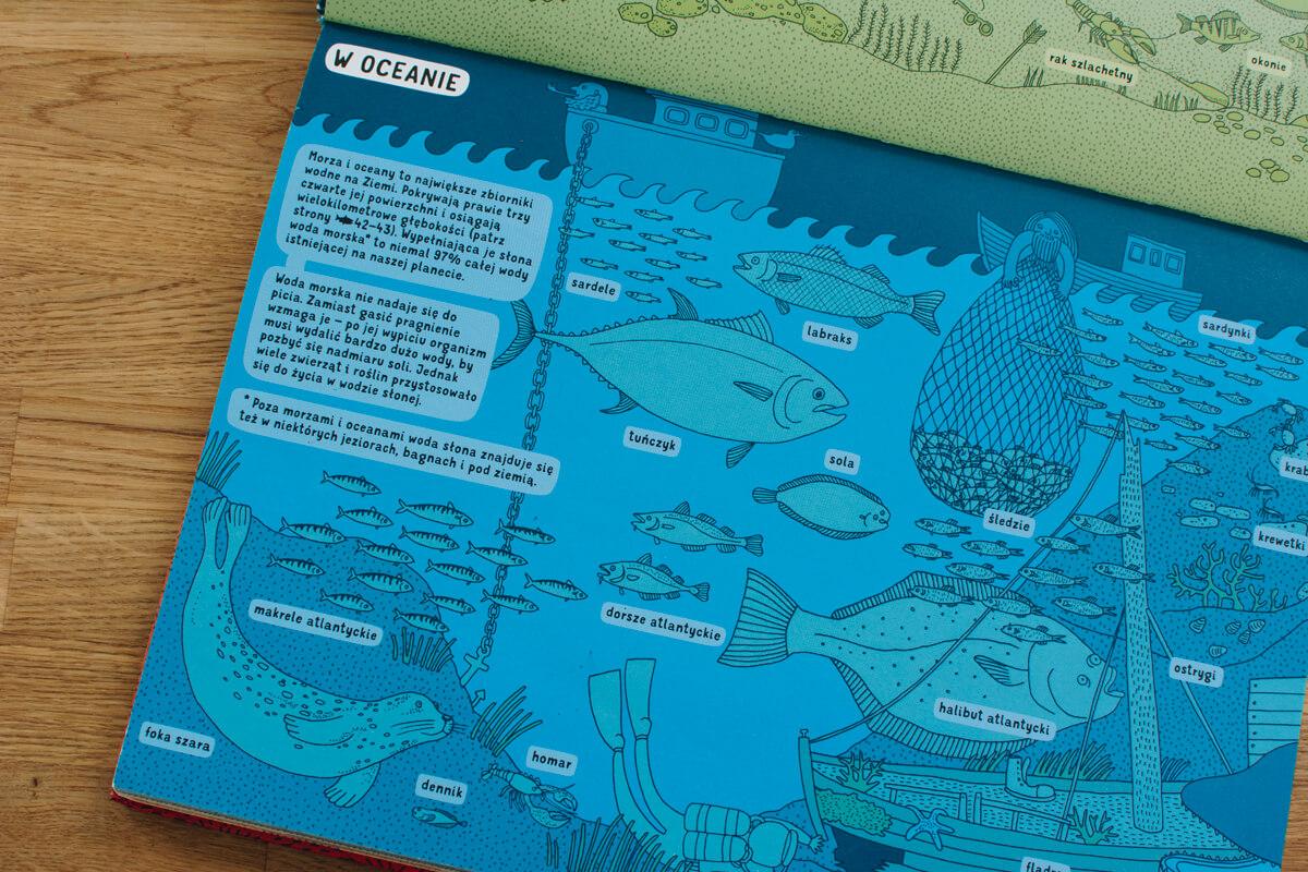 Zdjęcie ze środka książki Pod ziemią pod wodą wydawnictwo dwie siostry