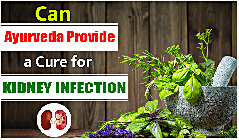 Can Ayurveda Provide A Cure For Kidney Infection