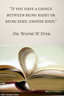 wisdom, quotes, wonder, choose kind t-shirts, heart, movie, for kids, acts of,  for adults, parents, heart, learning, lessons,
