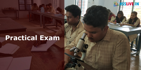 Higher Secondary Practical Scheme and Question Paper