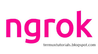 how to port forward in termux (Android) with ngrok - Tutorial Termux