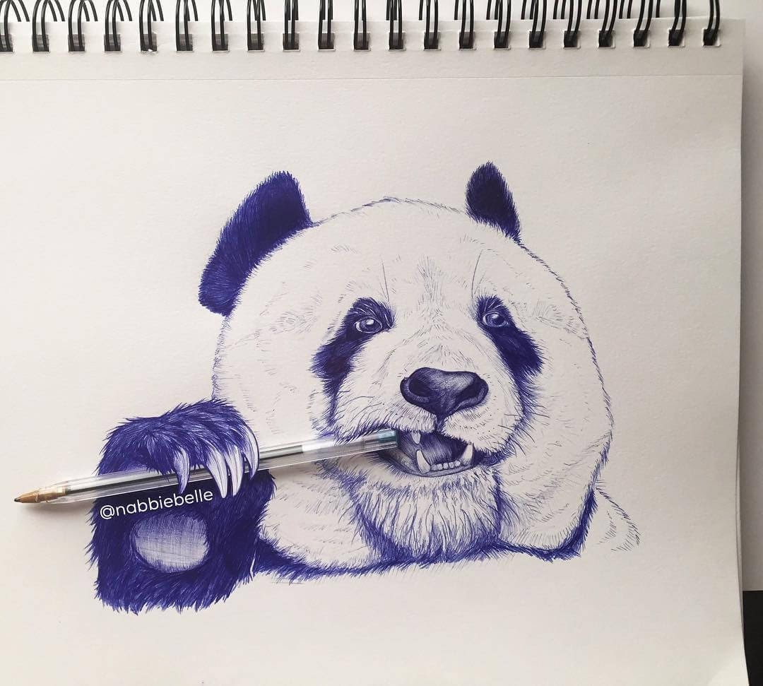 11-Panda-Annabelle-Marie-Inked-Animals-Drawn-in-Ballpoint-Pen-www-designstack-co