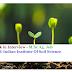 Walk-In-Interview Job | ICAR-Indian Institute Of Soil Science