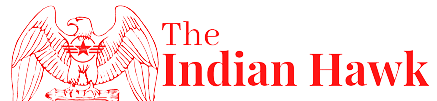 The Indian Hawk Defence News Site logo
