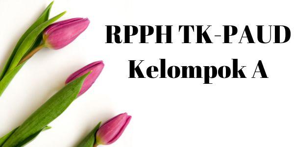 rpph_tk_paud