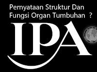 Pernyataan Tentang Struktur Dan Fungsi Organ Tumbuhan IPA (Ilmu Pengetahuan Alam)