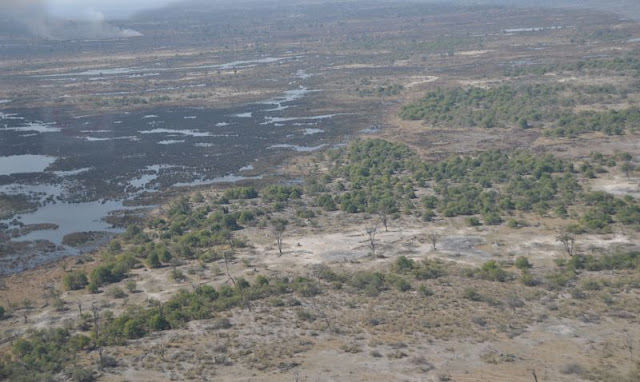 veduta aerea delta okavango