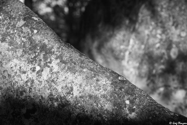 50 nouvelles Nuance de grès n°6 Forêt de Fontainebleau