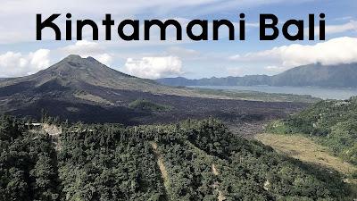 gambar Ciri-ciri Karakteristik Kopi Arabika Kintamani Bali Spesial Gunung Batur