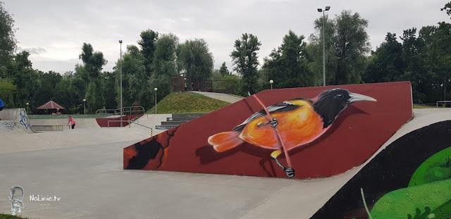 Skate park województwo lubuskie