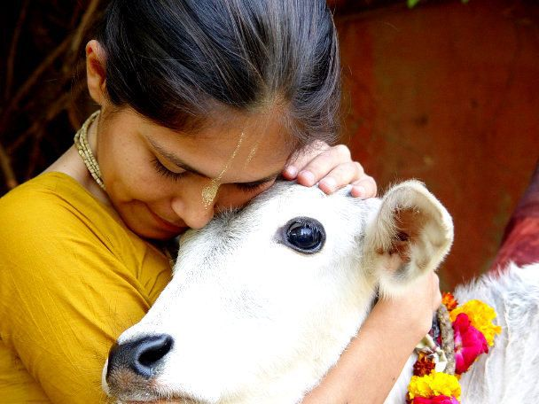 Why Hindus treat Cow as mother?