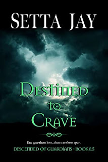 Destined to Crave by Setta Jay