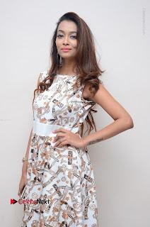 Telugu Actress Reshmi Thakur in Long Dress at Plus One ( 1) Audio Launch  0011.jpg