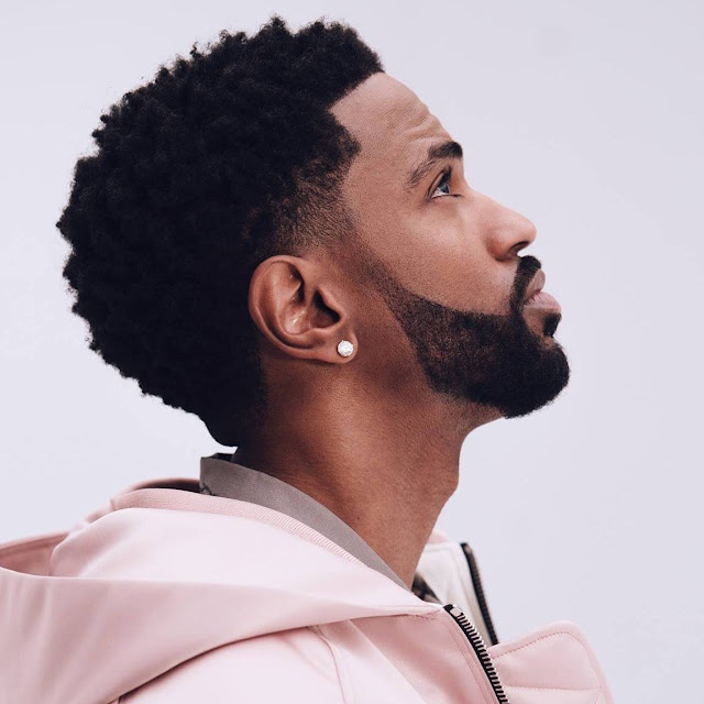 Big Sean height, age, how tall, net worth, How old, weight, biography, wiki