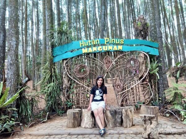 Harga Tiket Wisata Hutan Pinus Mangunan Jogja
