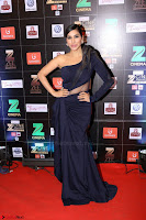 Bollywood Celebrities on the Red Carpet Of Zee Cine Awards 2017 Exclusive 048.JPG