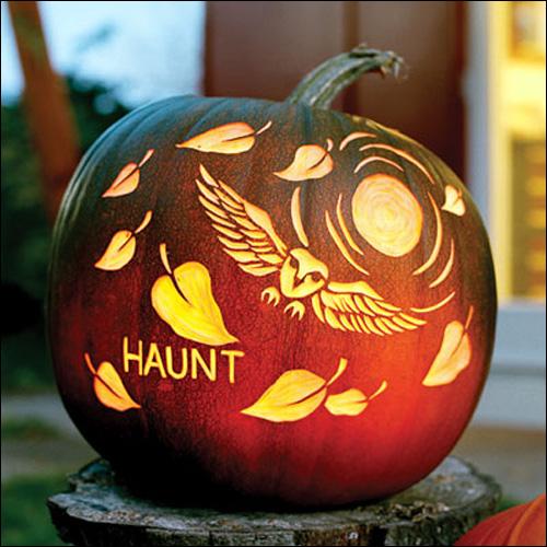 Cool Pumpkins Carving Ideas: My Owl Barn: Free Halloween Pumpkin Carving Owl Templates